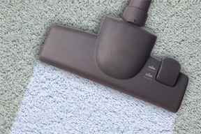 Carpet cleaning and sofa